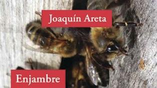"""Joaquín Areta: """"No estoy a la pesca de situaciones de consultorio para escribir"""""""