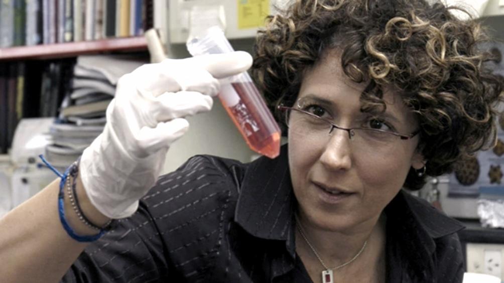 Los investigadores trabajaron con 3.000 muestras de pacientes con síntomas leves, graves y asintomáticos.