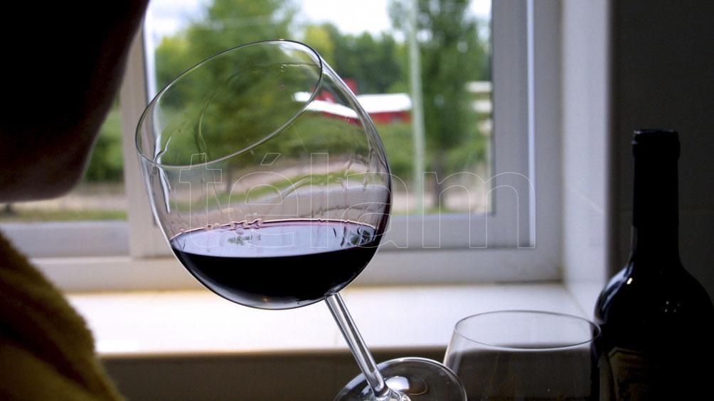 """Investigadoras de la UNT, desarrollan """"bacterias lácticas"""" para reducir la acidez y mejorar el aroma de los vinos tintos."""