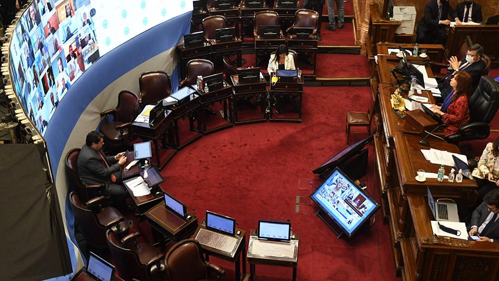 La primera sesión virtual en la historia del Congreso
