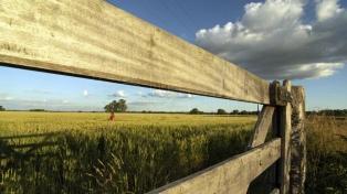 La actividad inmobiliaria rural cayó 47% en abril en forma interanual