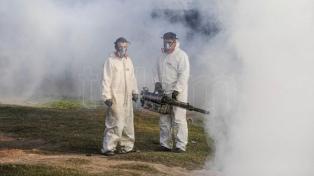 Con más de 4.000 casos de dengue, Tucumán ya superó el pico histórico de la enfermedad