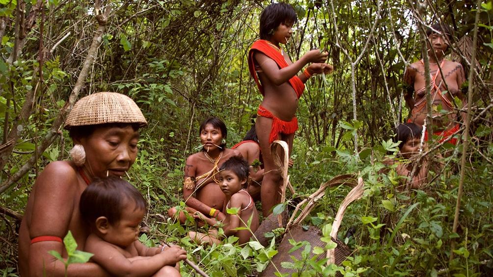 Foto de Survival International