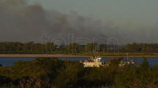 Ambientalistas presentaron un amparo en la CIDH por la destrucción de humedales en el islas del Delta