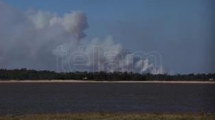 """Los operativos por incendios en islas del Paraná requieren """"22 millones de pesos diarios"""", dijo Fuks"""