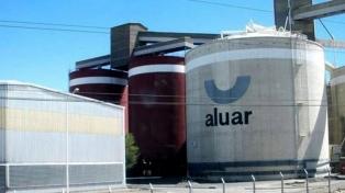 Temporal derribó al menos 20 torres de alta tensión que llevan electricidad a Aluar
