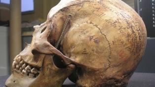 Reclaman a la ONU que un museo francés restituya restos de un tehuelche