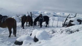 A caballo, en la nieve o con el rigor del clima, los agentes sanitarios acuden al llamado más lejano