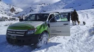 Declaran Estado de Emergencia y Desastre agropecuario por las fuertes nevadas