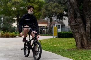 Ciudad: ordenan suspender la poda y tala de árboles hasta que haya un sistema de protección