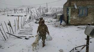 """Entidad rural dice que las nevadas dejan ver la """"pésima"""" infraestructura en la Patagonia"""