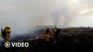 Cabandié y Fuks piden que la Justicia intervenga para frenar los incendios en las islas