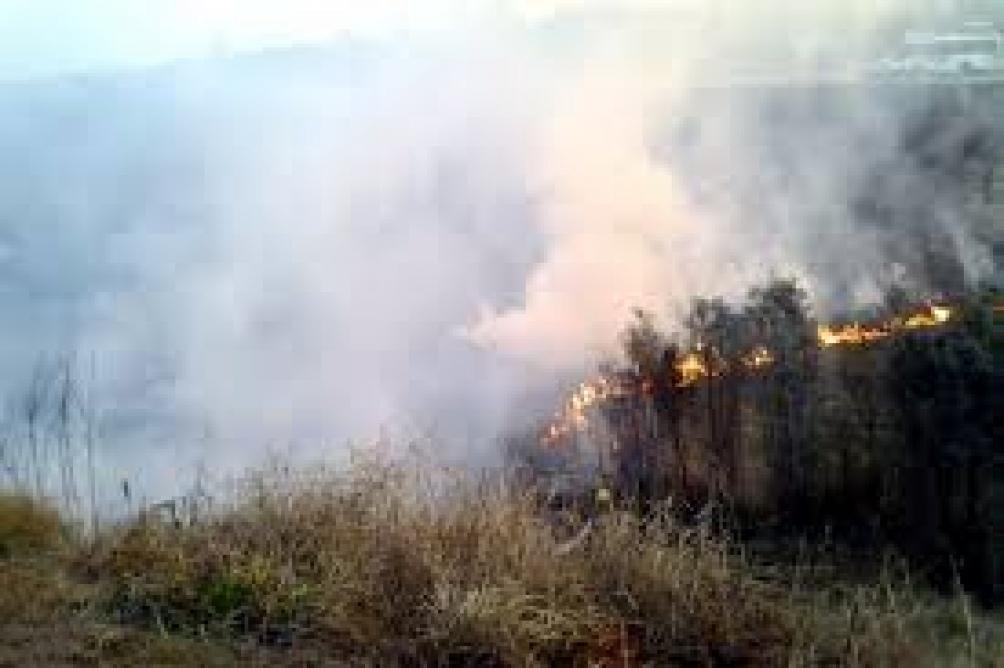 Presentaron el primer Faro de Conservación en las islas para evitar incendios