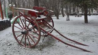 Una intensa nevada cubrió el sur mendocino