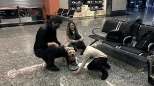El emotivo encuentro de un niño con autismo y su perra de asistencia