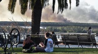 Vecinos reclaman que Nación y provincias apaguen los incendios en el Delta del Paraná