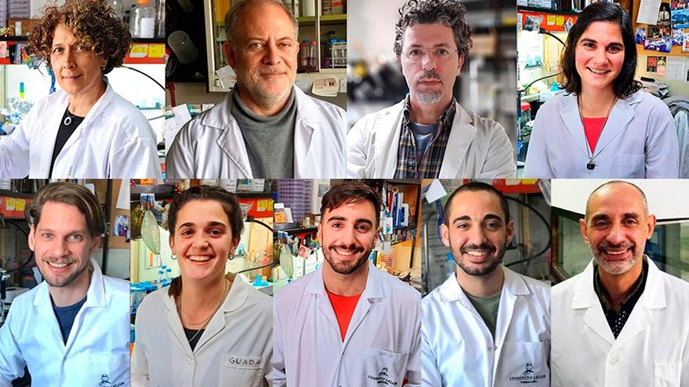 """El proyecto fue realizado en el marco de la """"Unidad Coronavirus Covid-19""""."""