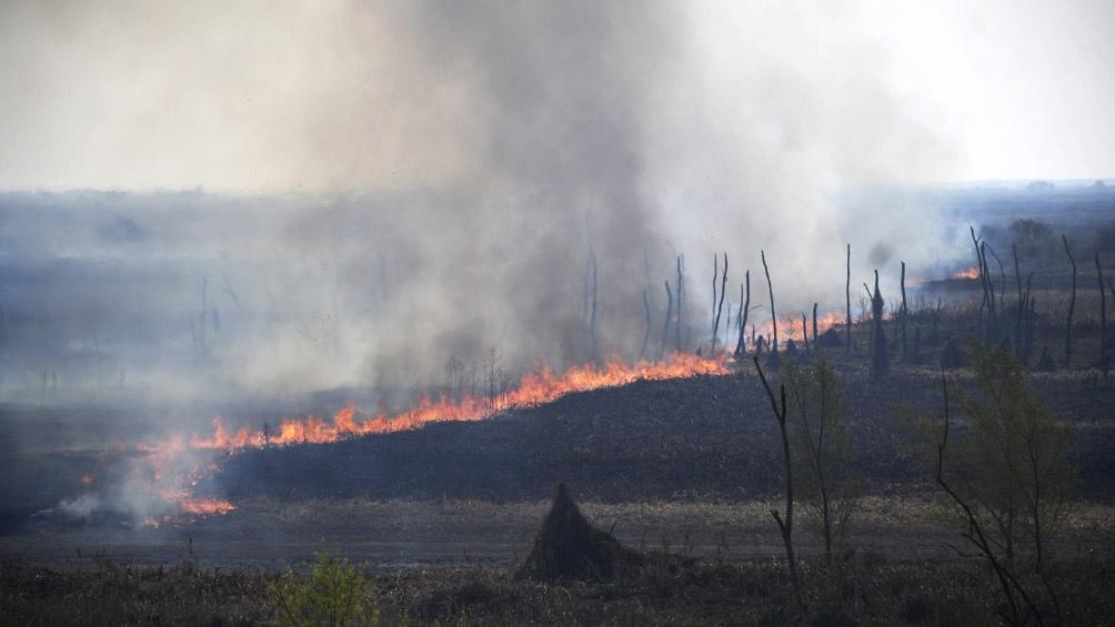 Según Cabandie el 95 % de los incendios son intencionales.