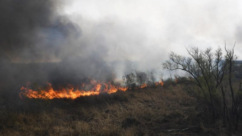 Alertan sobre la expansión del fuego en islas entrerrianas por fuertes ráfagas de viento