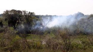 El Gobierno de Insfrán asegura que el 42% de los incendios forestales fueron en Formosa