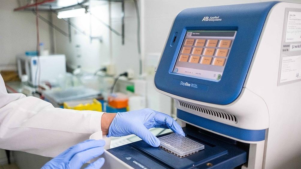 Lo investigadores venían estudiando el accionar de la proteína en el cáncer.