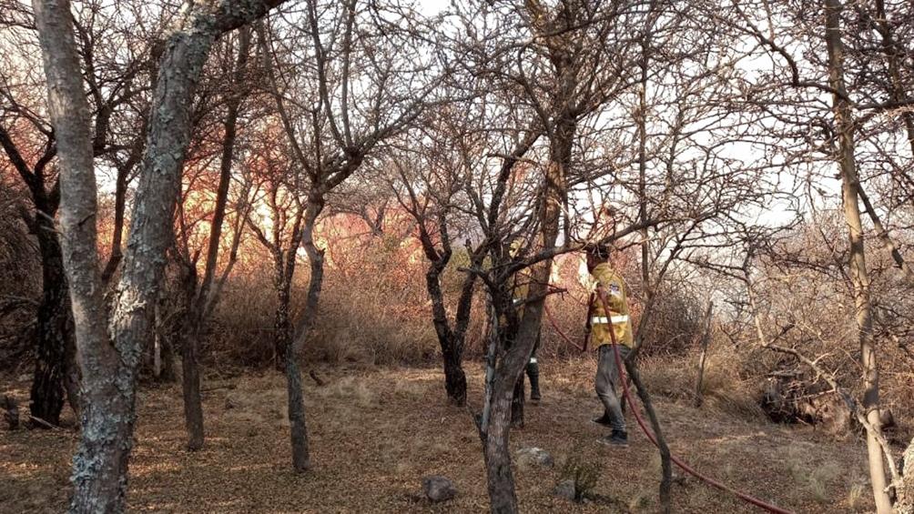 Extinguen focos activos de incendios forestales en Córdoba