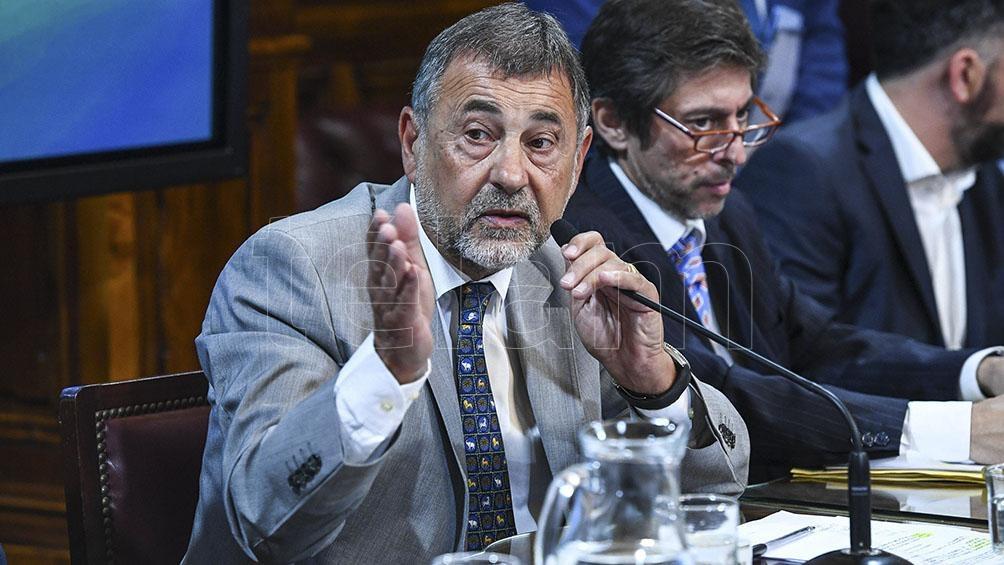 Carlos Caserio anticipó que está firmado el dictamen y la iniciativa llegaría al recinto el jueves.