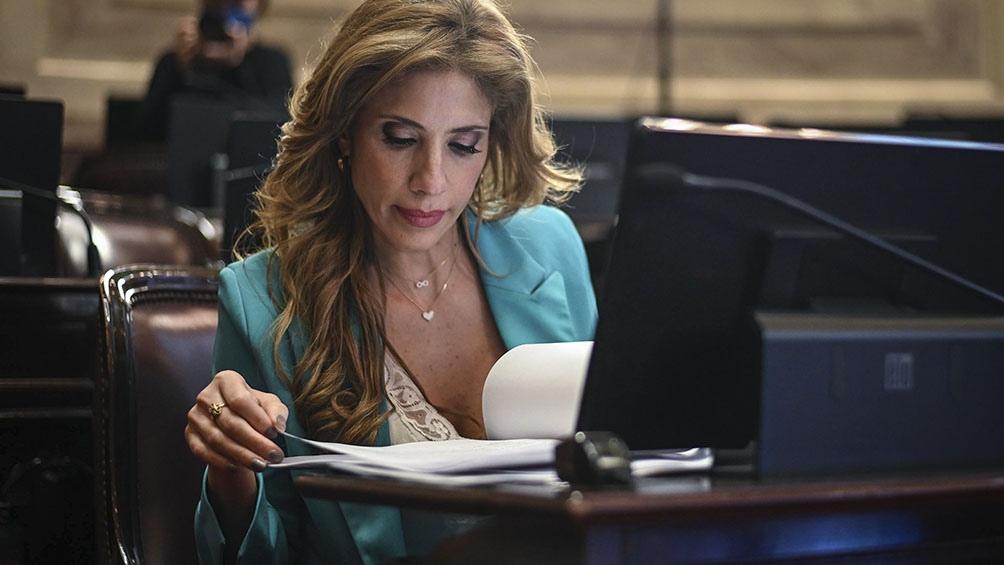 """En nombre del Frente de Todos, el senador Mario Pais sostuvo que el mecanismo llevado adelante hasta ahora para las sesiones virtuales fue """"virtuoso"""""""