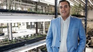 Distinguen a un científico argentino por su investigación en cultivos adaptables al cambio climático