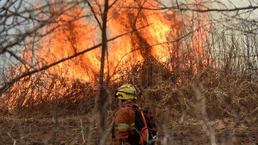 El Sistema Federal de Manejo del Fuego depende del Ministerio de Ambiente y Desarrollo Sostenible