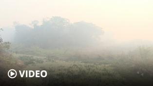 El Pantanal brasileño registró en septiembre los peores incendios de la historia