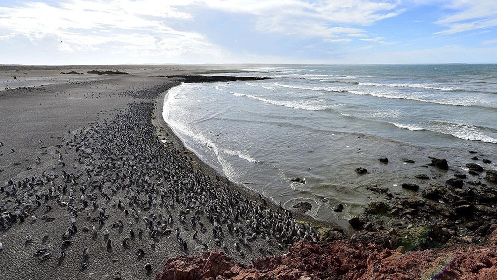 """En Chubut, el ministro de Turismo y Áreas Protegidas, Néstor García, dijo que la distinción fue recibida """"con mucho orgullo""""."""