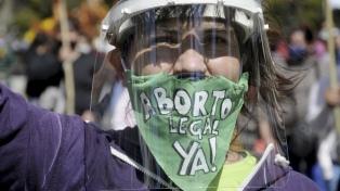 """El Gobierno espera """"los tiempos necesarios"""" para enviar el proyecto de aborto legal"""