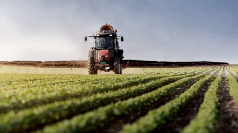 Estiman que el agro aportará en 2021 una producción equivalente a más de US$ 40.000 millones