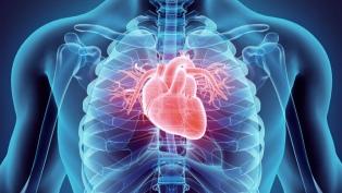 Advierten el riesgo de las enfermedades coronarias como efecto colateral del coronavirus