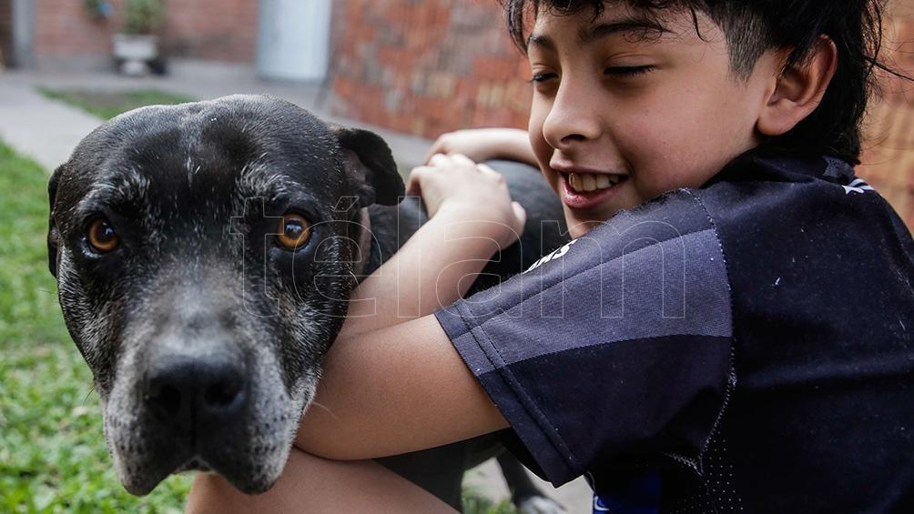 El 21 de julio es el Día Mundial del Perro.