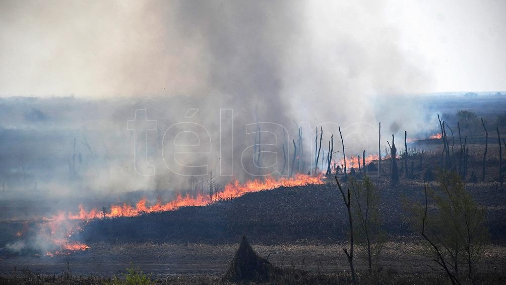 """""""En el caso de incendios de zonas agrícolas, no se permitirán modificar esos suelos por el termino de 30 años para lograr su restauración"""""""