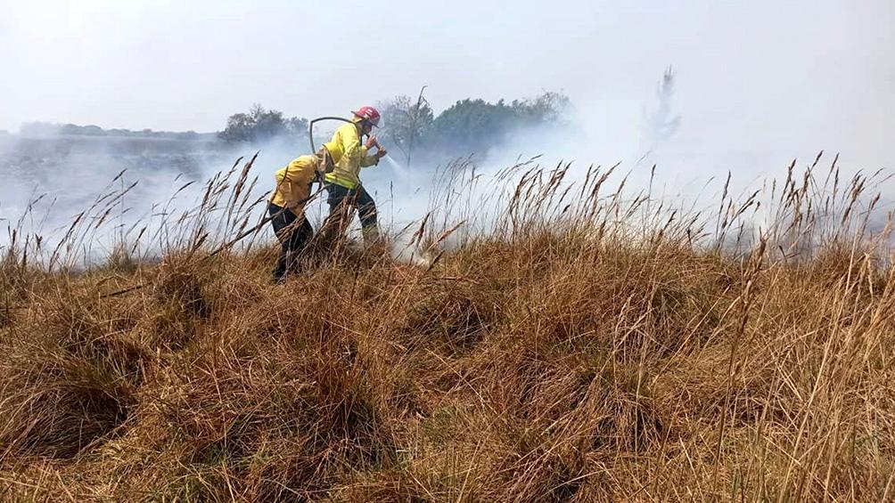 Comisión discute este lunes un proyecto para proteger terrenos de incendios intencionales