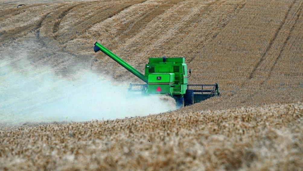 Las principales cadenas de cultivos en Argentina aportarán un monto récord al Producto Bruto Interno (PBI).