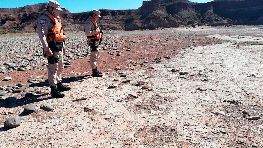 Este tipo de rastros expone las características que tenía la región hace 99 millones de años.
