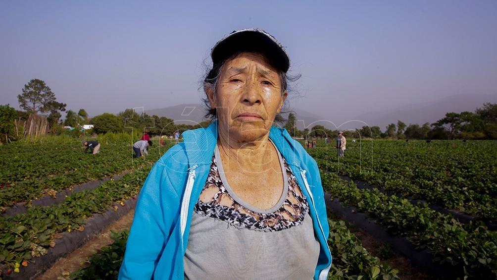 La mujer toma parte activa en las labores del campo.