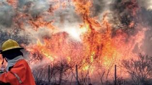 Analizan crear un comité específico con fuerzas de seguridad nacionales y provinciales por incendios