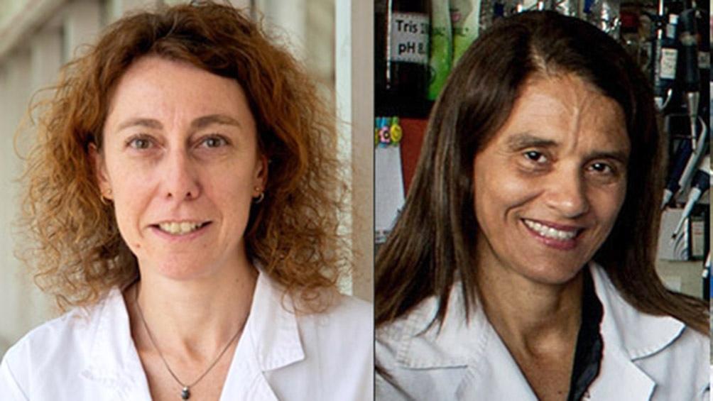 Andrea Llera y Paula Schaiquevich, las científicas que lideran el proyecto.