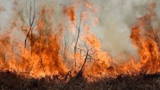 Seis provincias continúan con focos activos de incendios forestales