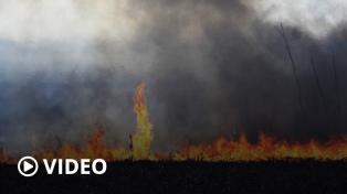 """Cabandié pidió """"conciencia"""" ciudadana, del Estado y del sector productivo por los incendios"""