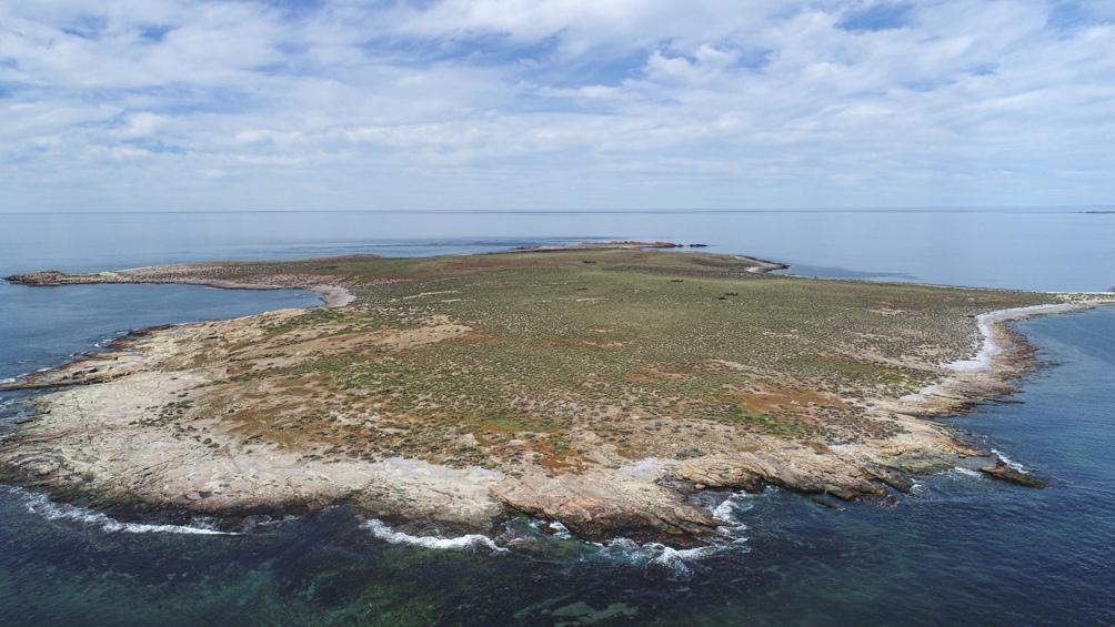 El nombre de Dos Bahías es porque está al sur de la bahía Camarones y al norte de bahía Bustamante.