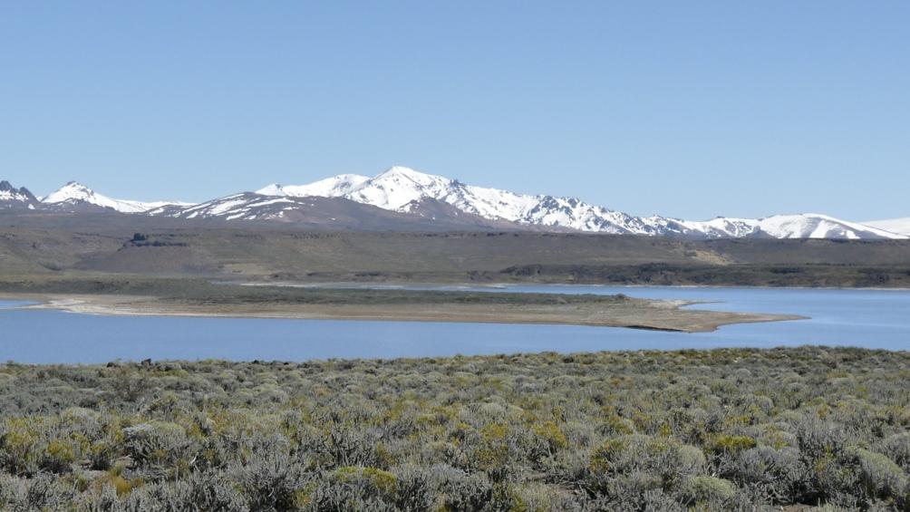 En Laguna Blanca hay más de un centenar de especies de aves identificadas.