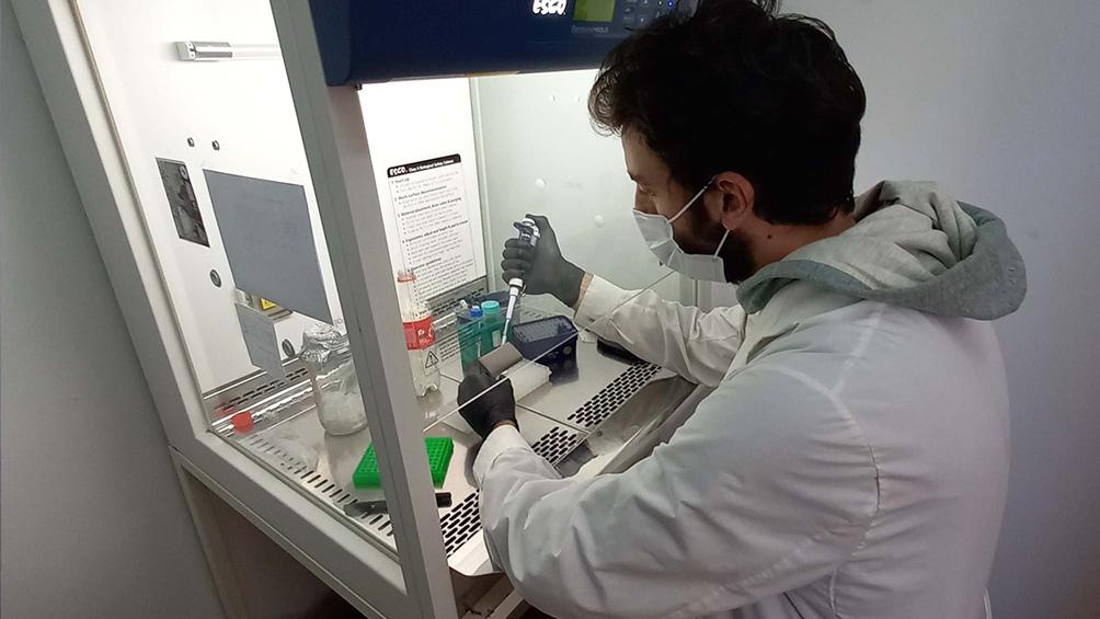 Más del 95% del SARS-CoV-2 que circuló en el AMBA posee mutaciones en la región