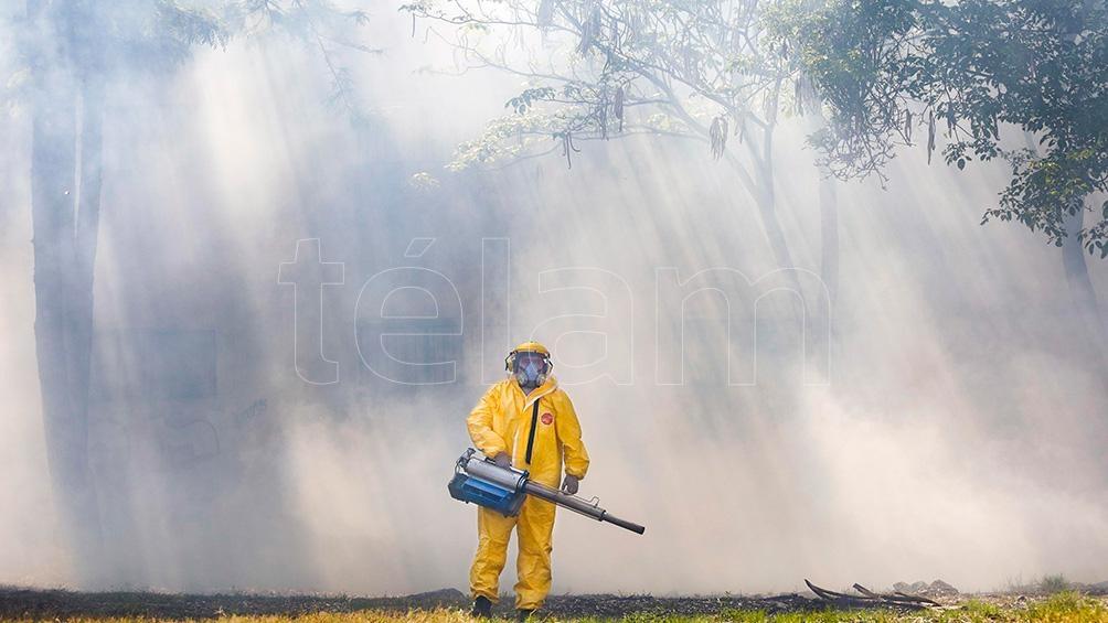 """Si encuentra todo lo necesario en una vivienda, el mosquito del dengue """"no se desplaza más de 50 ó 100 metros""""."""