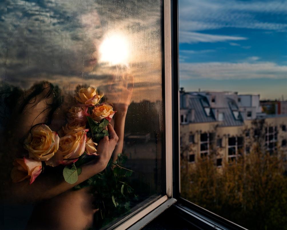 La exposición internacional de fotografía cuenta con una selección de 240 fotos.